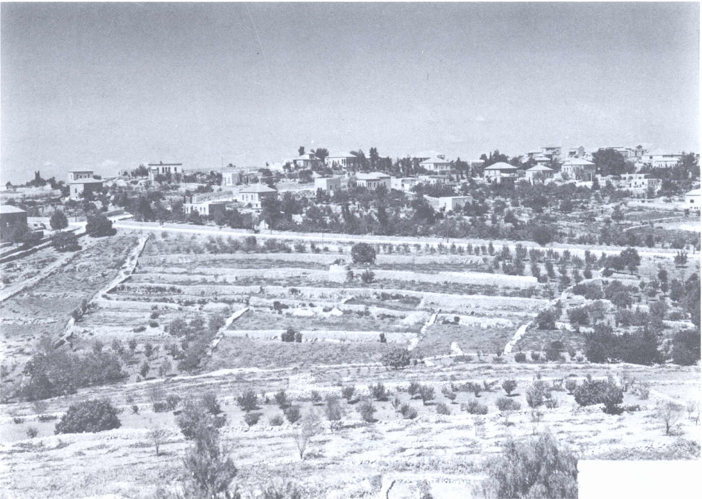 Ramallah - رام الله : Undated general view located half a mile west of the Muntazah