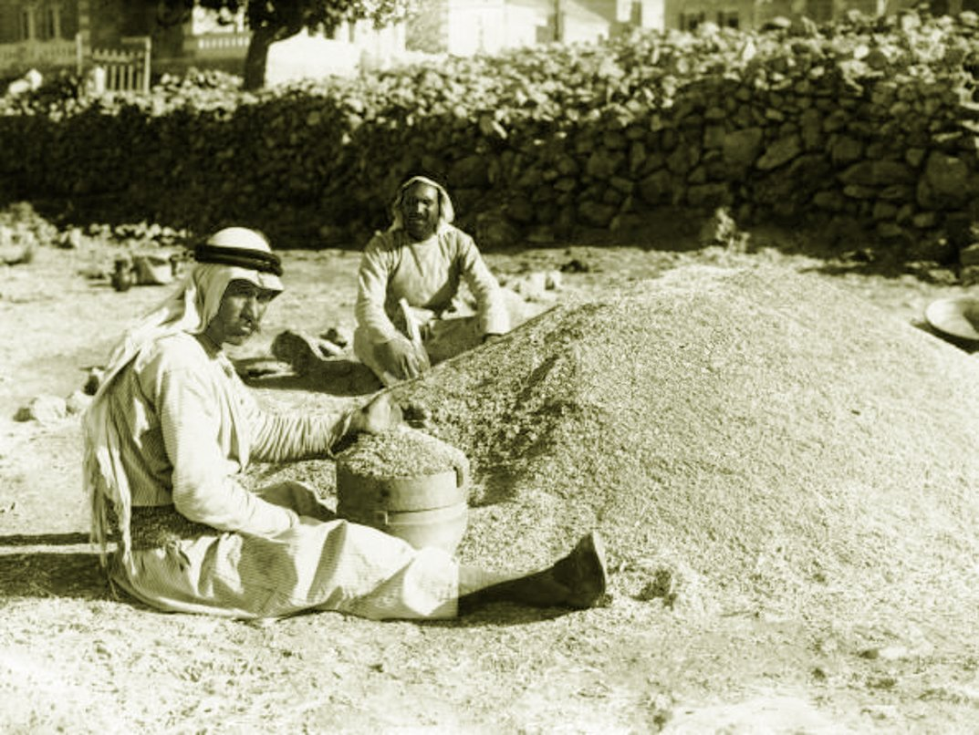 Ramallah - رام الله : Two men measuring wheat in Ramallah, Early to mid. 20th c. - (Photo by Chalil Raad, Palestine's first Arab photographer, 1854-1957)ram321z