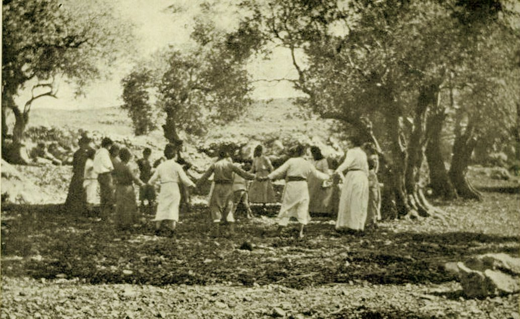 Ramallah - رام الله : RAMALLAH - Palestinian children of Ramallah playing under the olive groves, 1914 - ( Per Reem Ackall )