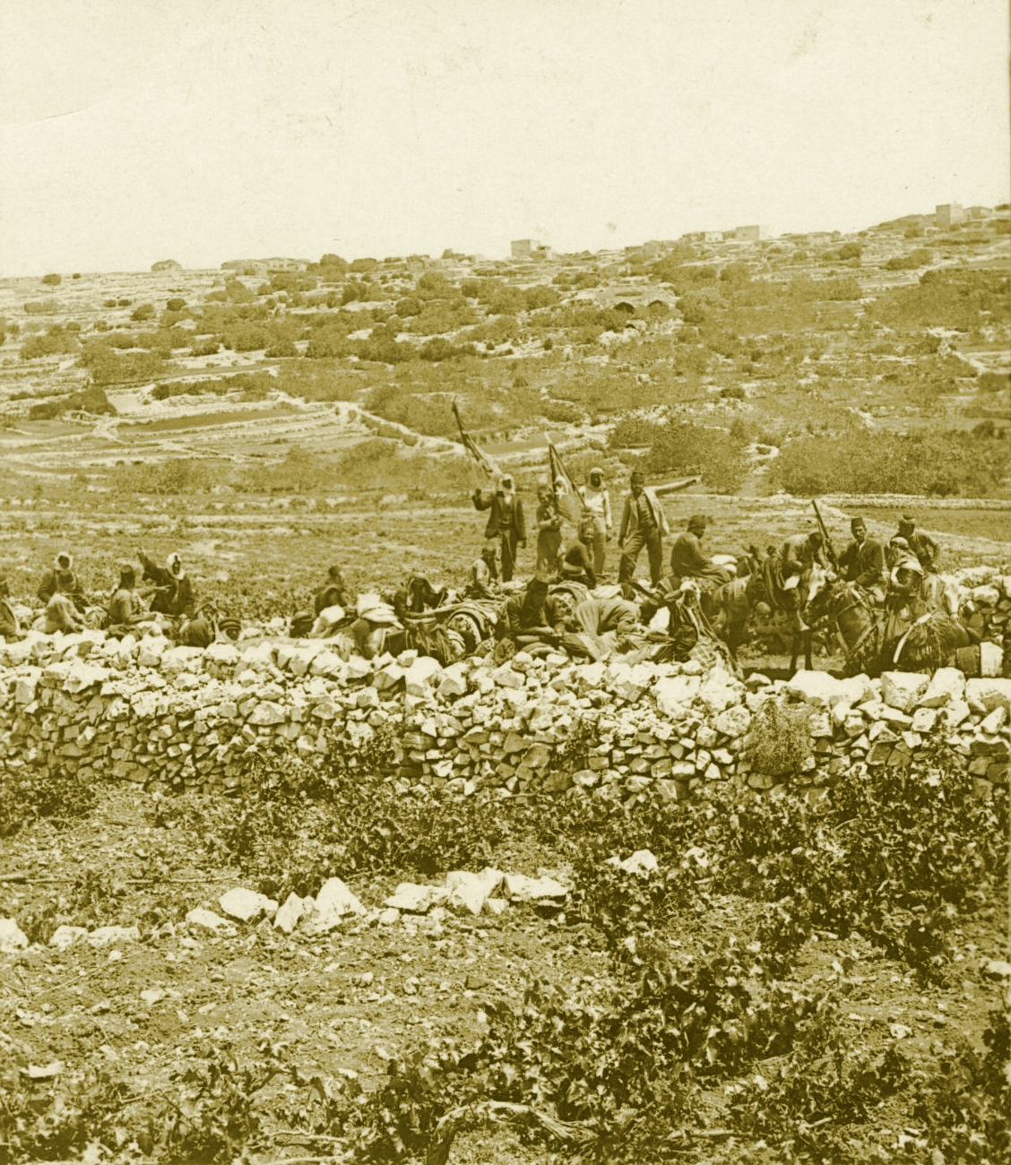 Ramallah - رام الله : RAMALLAH - A small caravan from Damascus travelling to Jerusalem, in the environs of Ramallah-Bireh, circa 1900s - Keystone-Mast Collection (Per Reem Ackall)
