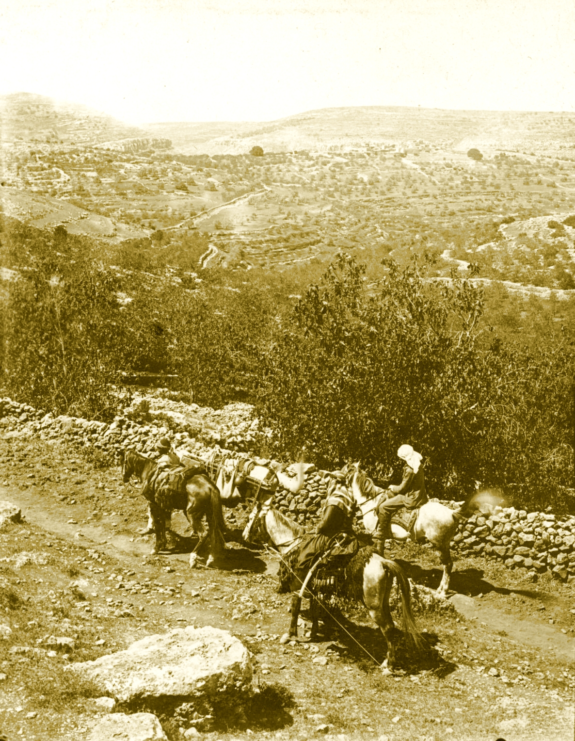 Ramallah - رام الله : RAMALLAH - The road from Ramallah, Al-Bireh to Nablus (North of Beitin) (Per Reem Ackall)