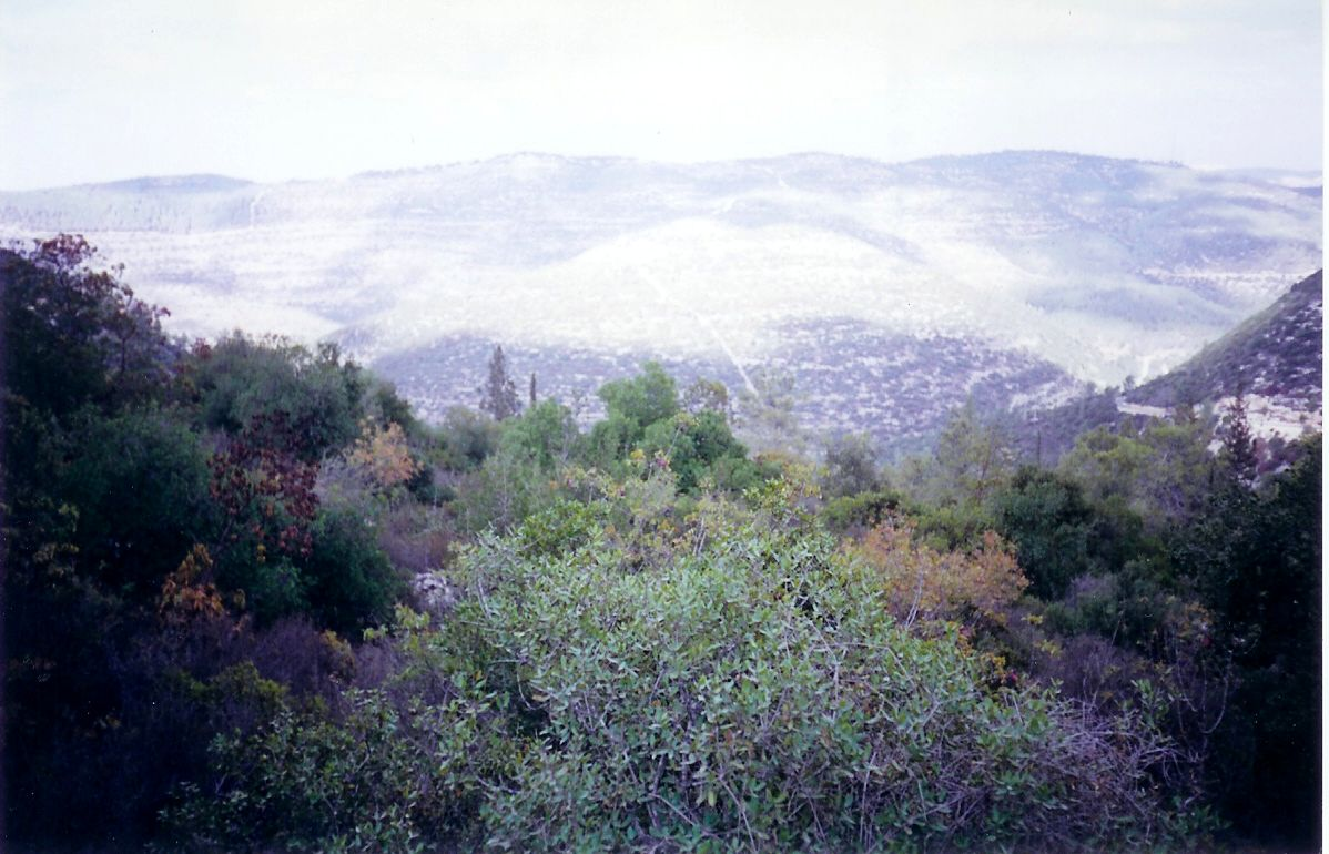 Sharafat - شرفات : Palestine's Mountains Beyond Sharafat #2