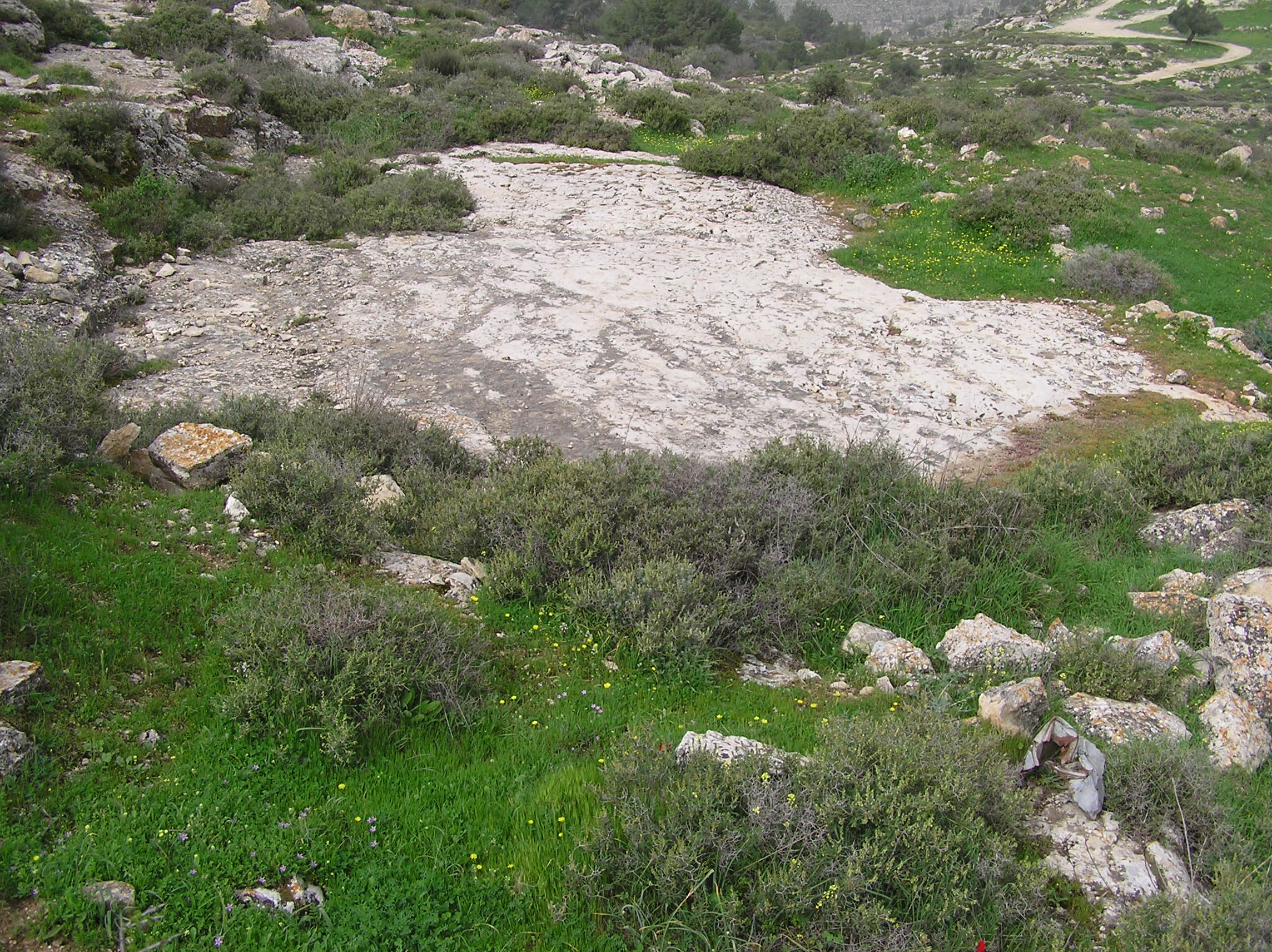 Sharafat - شرفات : A Solid Rock Threshing Floor (Baidar) View Towards The West.