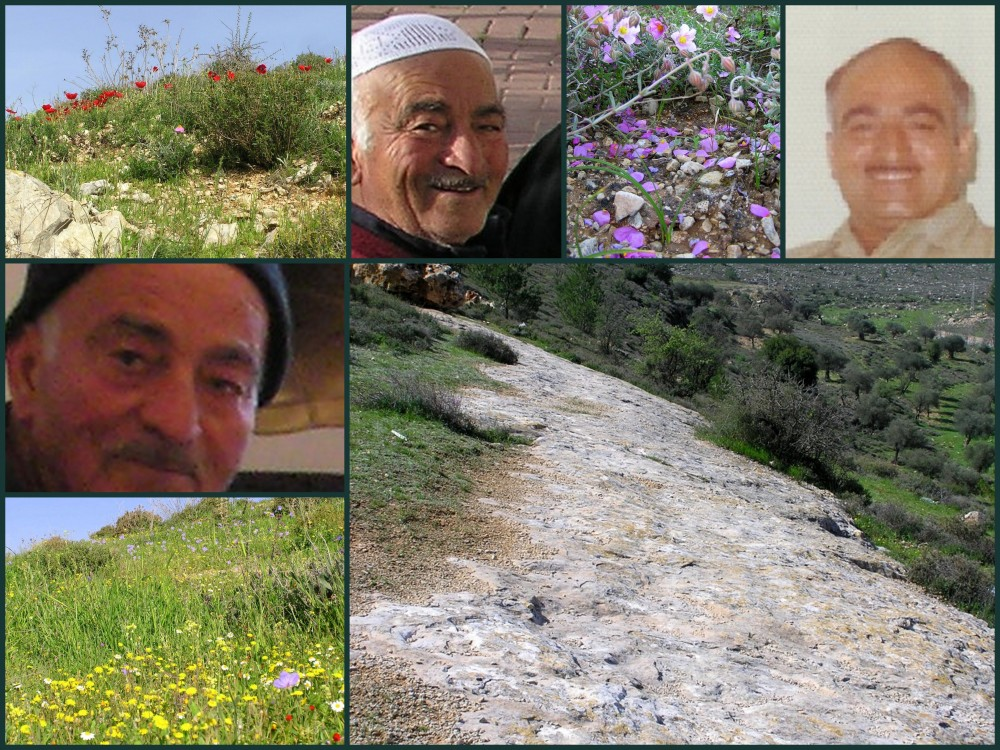 Sharafat - شرفات : Abdullah - Abu Majed  & Images From Al-Thahara  {March 2012}... An Area That He Loved...