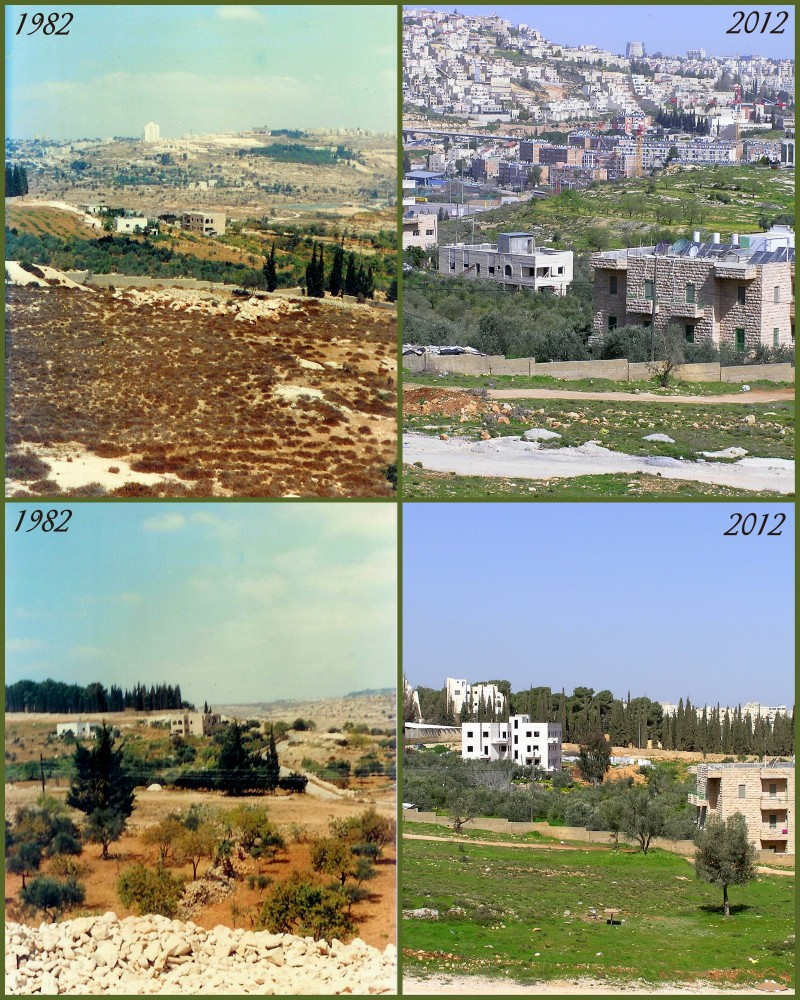 Sharafat - شرفات : Sharafat Areas {1982 / 2012 } -- The Pictures Speak for Themselves