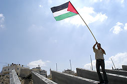 al-Ram - الرامّ : A young Palestinian man waves a Palestinian flag atop the blocks waiting to be erected along the roadway from Jerusalem to Ramallah.