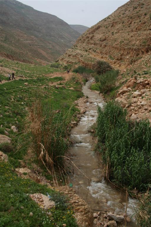 al-'Auja -العوجا: مياه العوجا