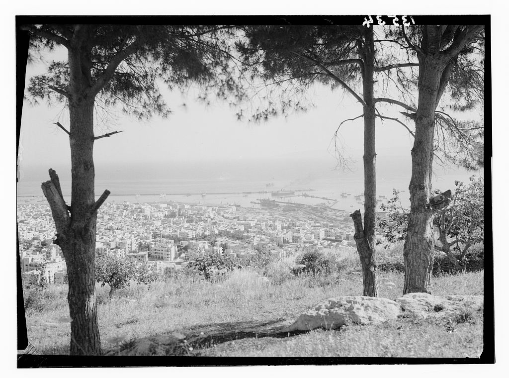 Haifa - حيفا : General view of Haifa from Mt. Carmel looking north. 1935