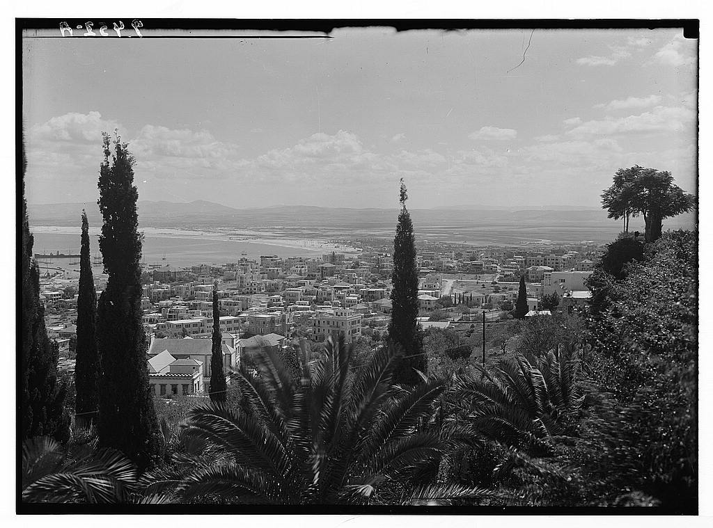 Haifa - حيفا : General view of Haifa before Nakba from the Mt. Carmel looking north. Maston collection.