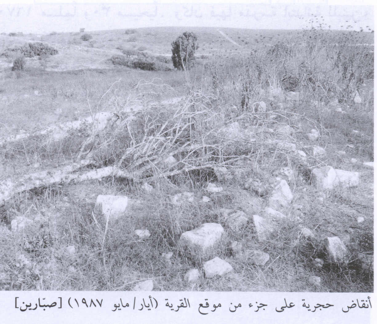 Sabbarin - صبارين : Village Stone Rubble In 1987