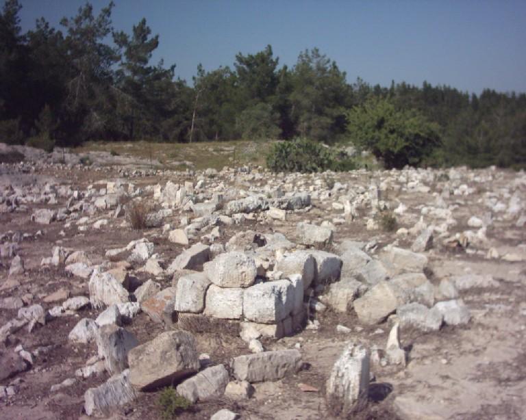 قرى فلسطين المدمرة - صفحة 2 Picture5298