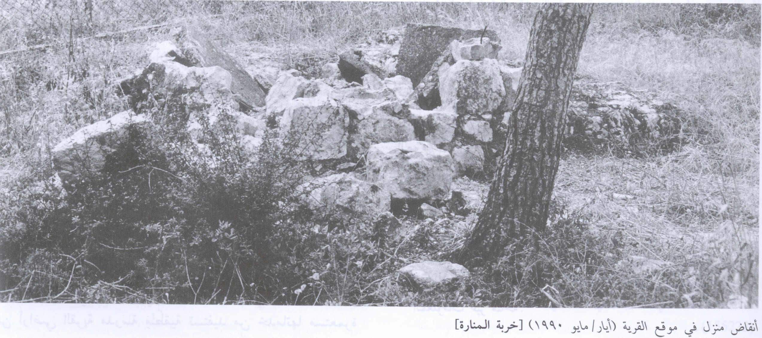 قرى فلسطين المدمرة - صفحة 2 Picture413
