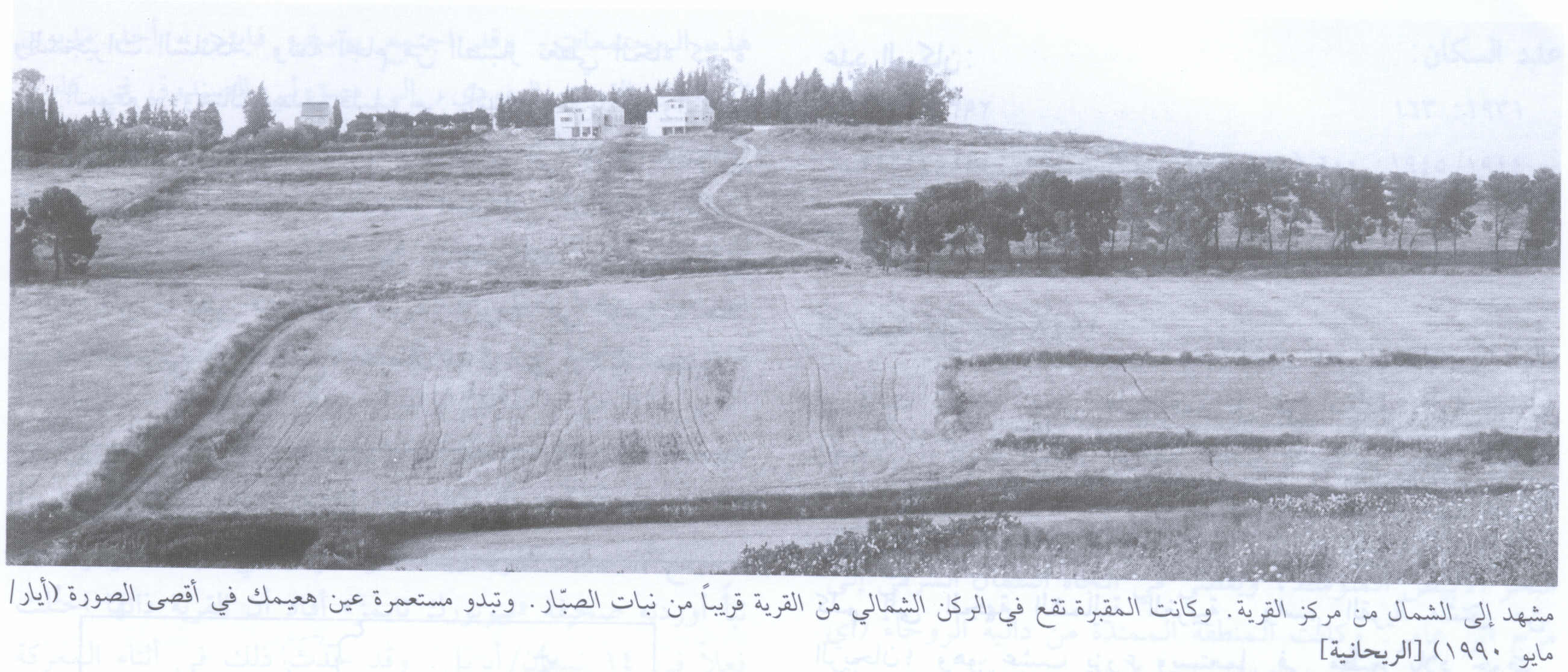 al-Rihaniyya - الريحانية : General View Of Village Site In 1990