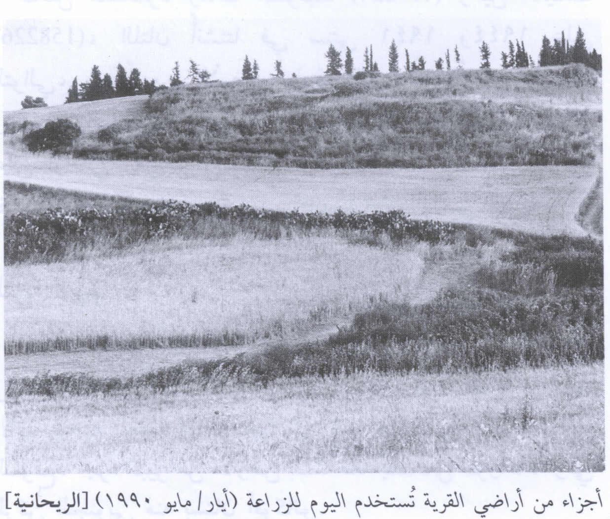 Portions of village land, 1990