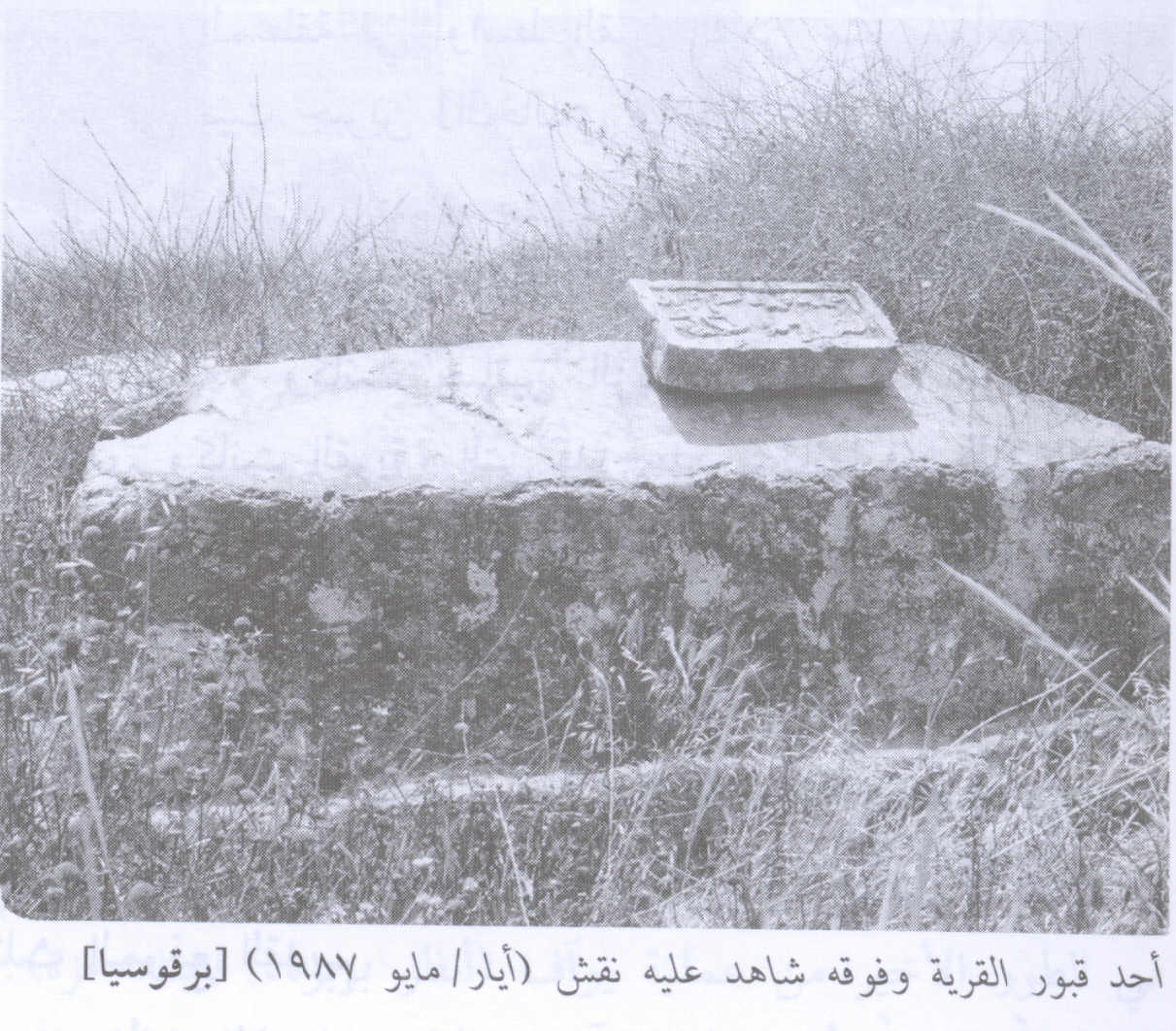 Barqusya - بركوسيا (برقوسية) : An Inscribed Tombstone On A Village grave In 1987