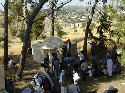 Bayt Jibrin - بيت جبرين : Refugees Raised A Tent Symbolizing 52 Years Of Ethnic Cleansing At The Site Of The Mansion Of al-Sheikh Abd el-Rahman, May 2000