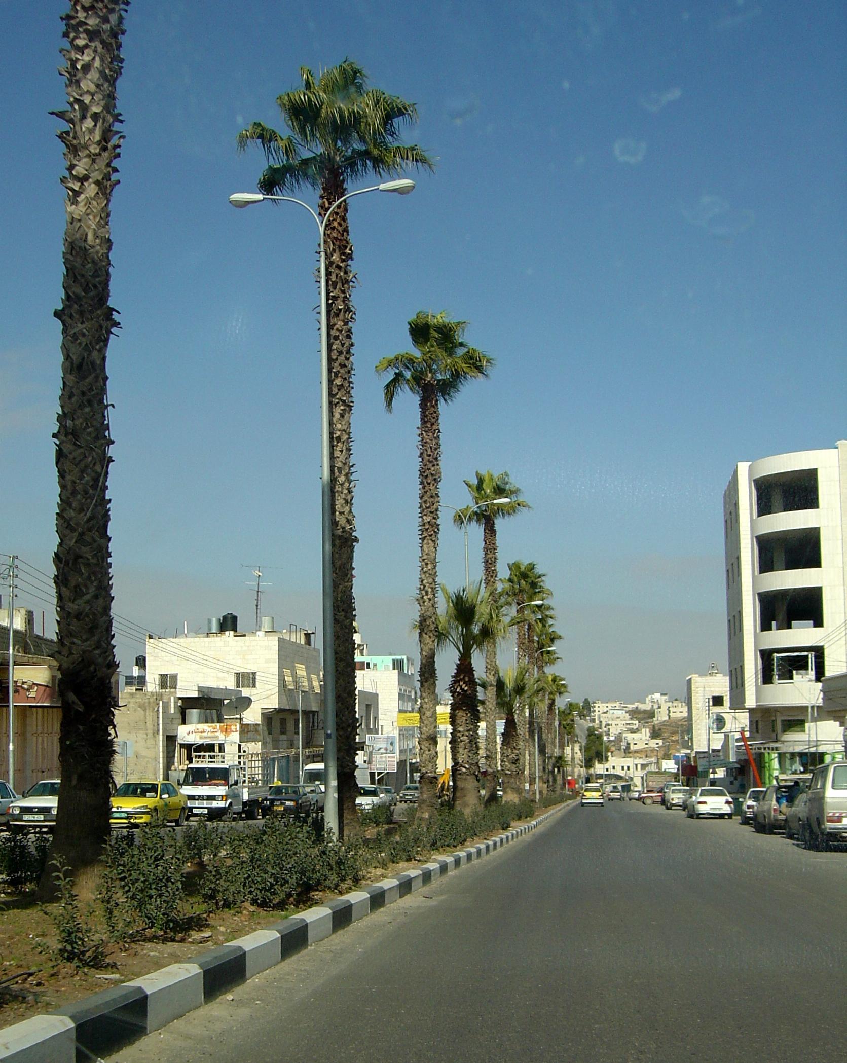 Hebron-الخليل: الطريق الرئيسي المؤدي لبيت لحم والقدس.