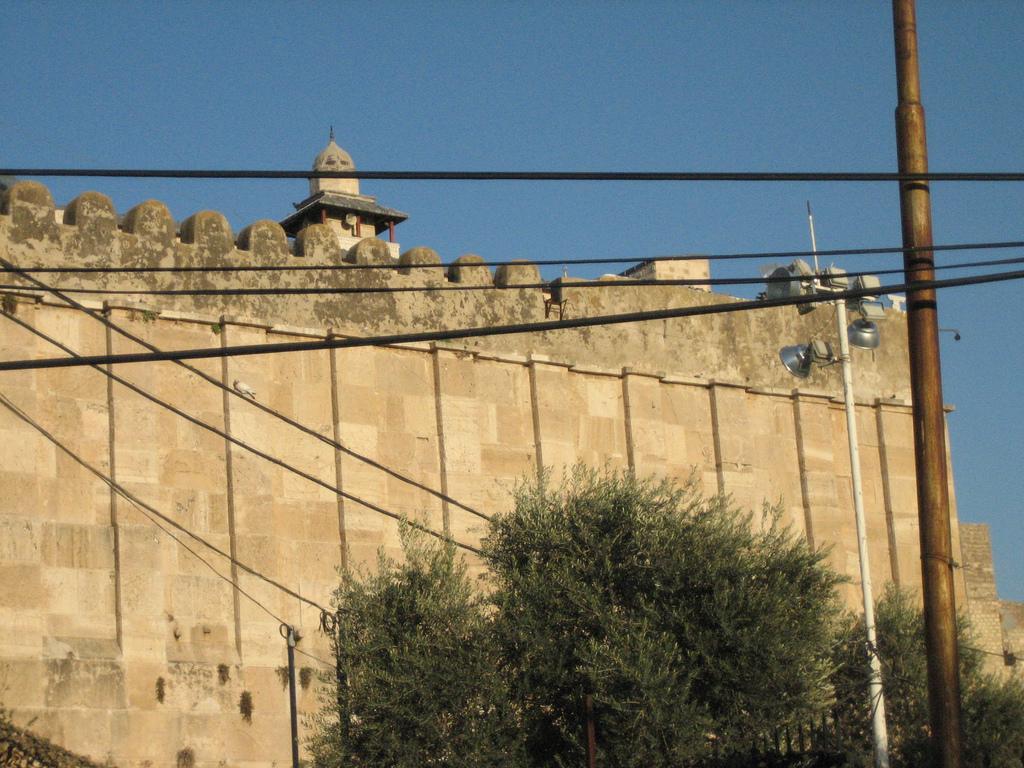 ����� ���������� ������ Hebron-10253.jpg