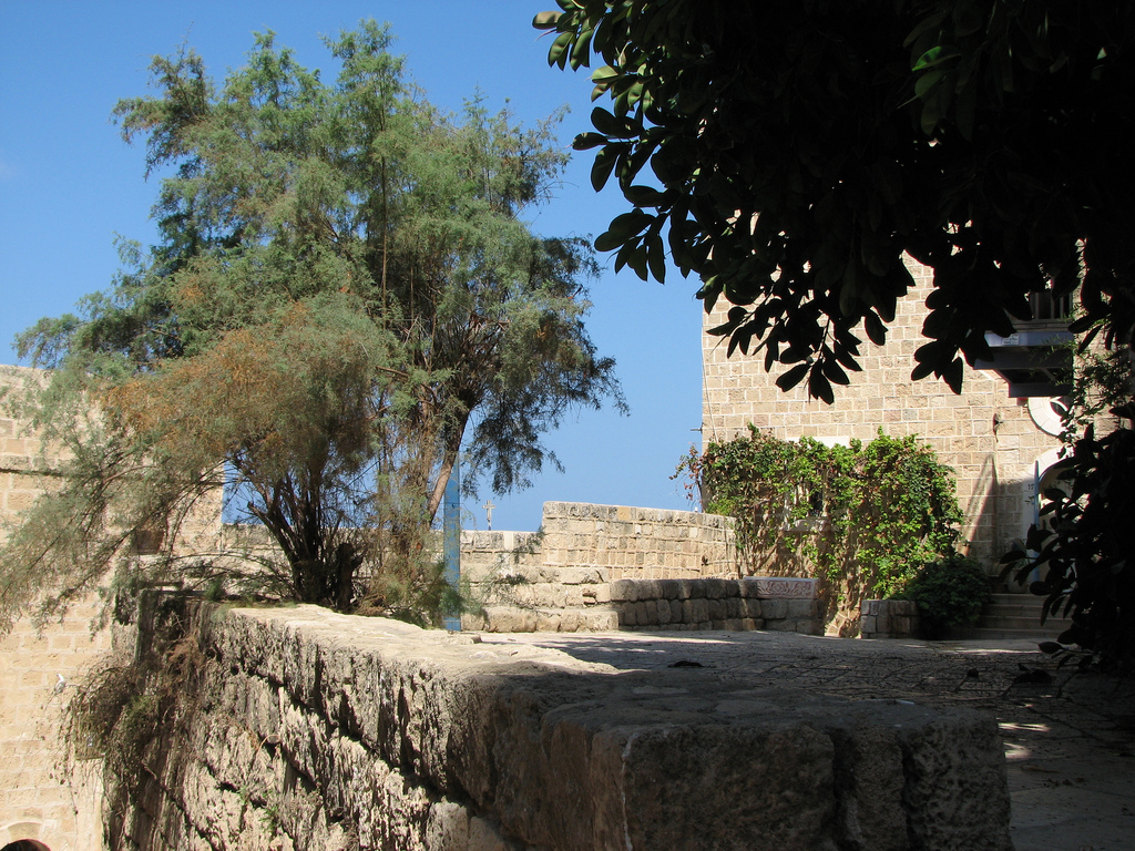 Jaffa - يافا : The courtyard of one of the churches in the old city