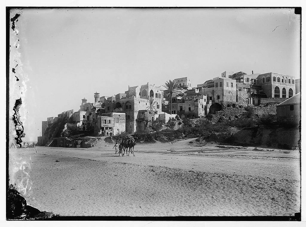 Jaffa - يافا : General view from the south beach looking north, 1898-1914. Matson Collection.