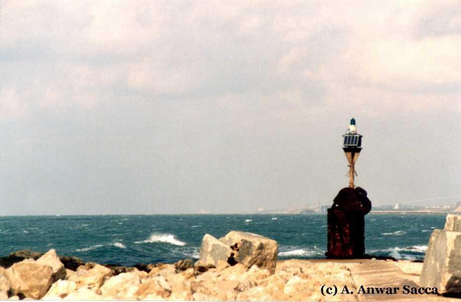 صور من فلسطين Picture1948
