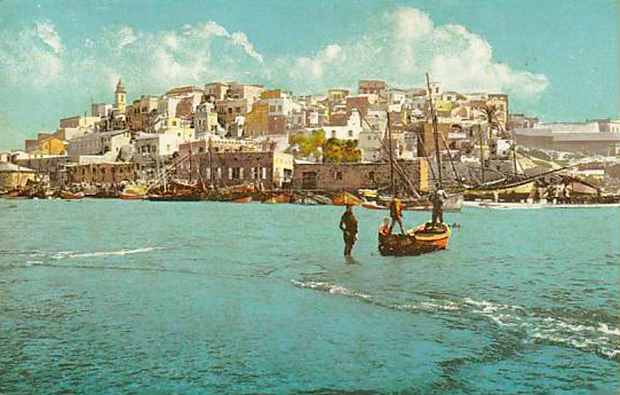 Jaffa - يافا : JAFFA - late 19th, early 20th c. 60 - Jaffa basking in glorious sunshine