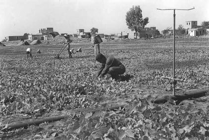 Rantiya - رنتيّة : General View Of Rantiya, Note How Palestinian Farms Are Being Utilized By Moracan Arab Jews, the village in the background, 1949