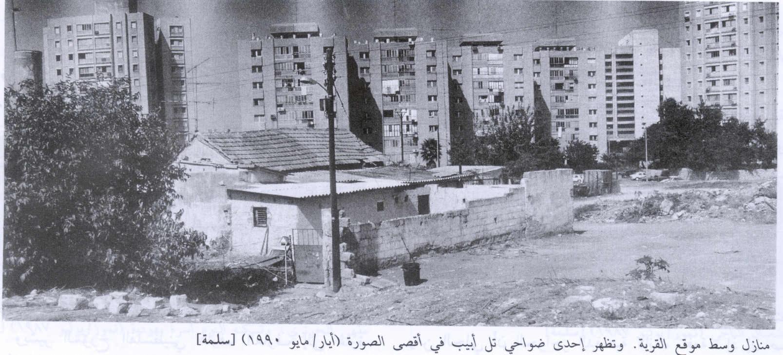 Salama-سلمة الباسلة: Village House In 1990