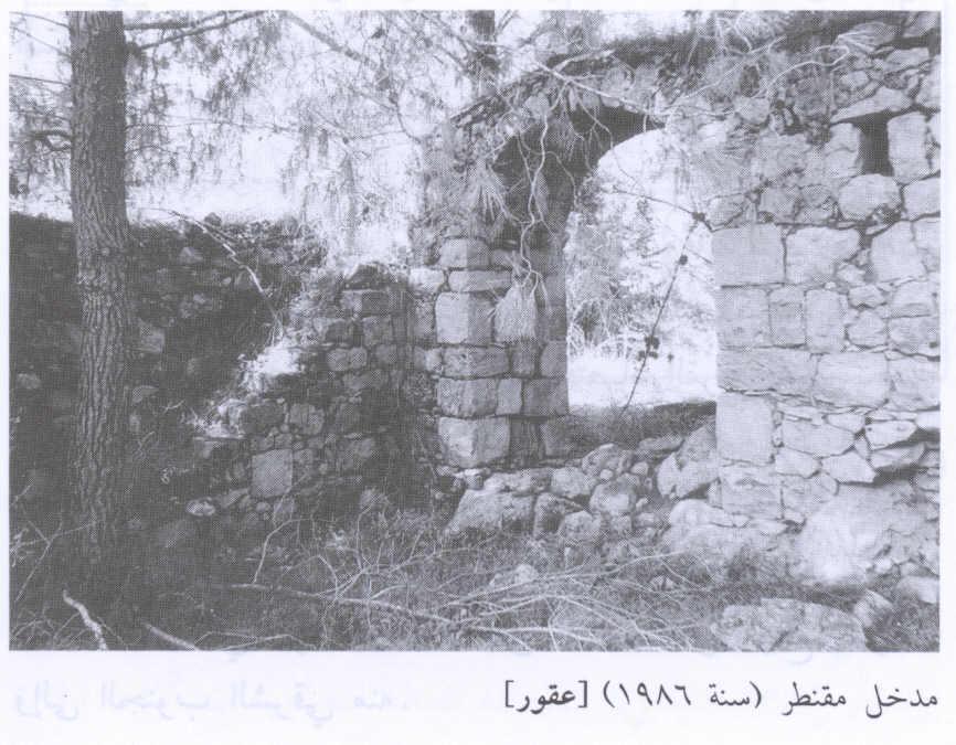 قرى فلسطين المدمرة Picture38