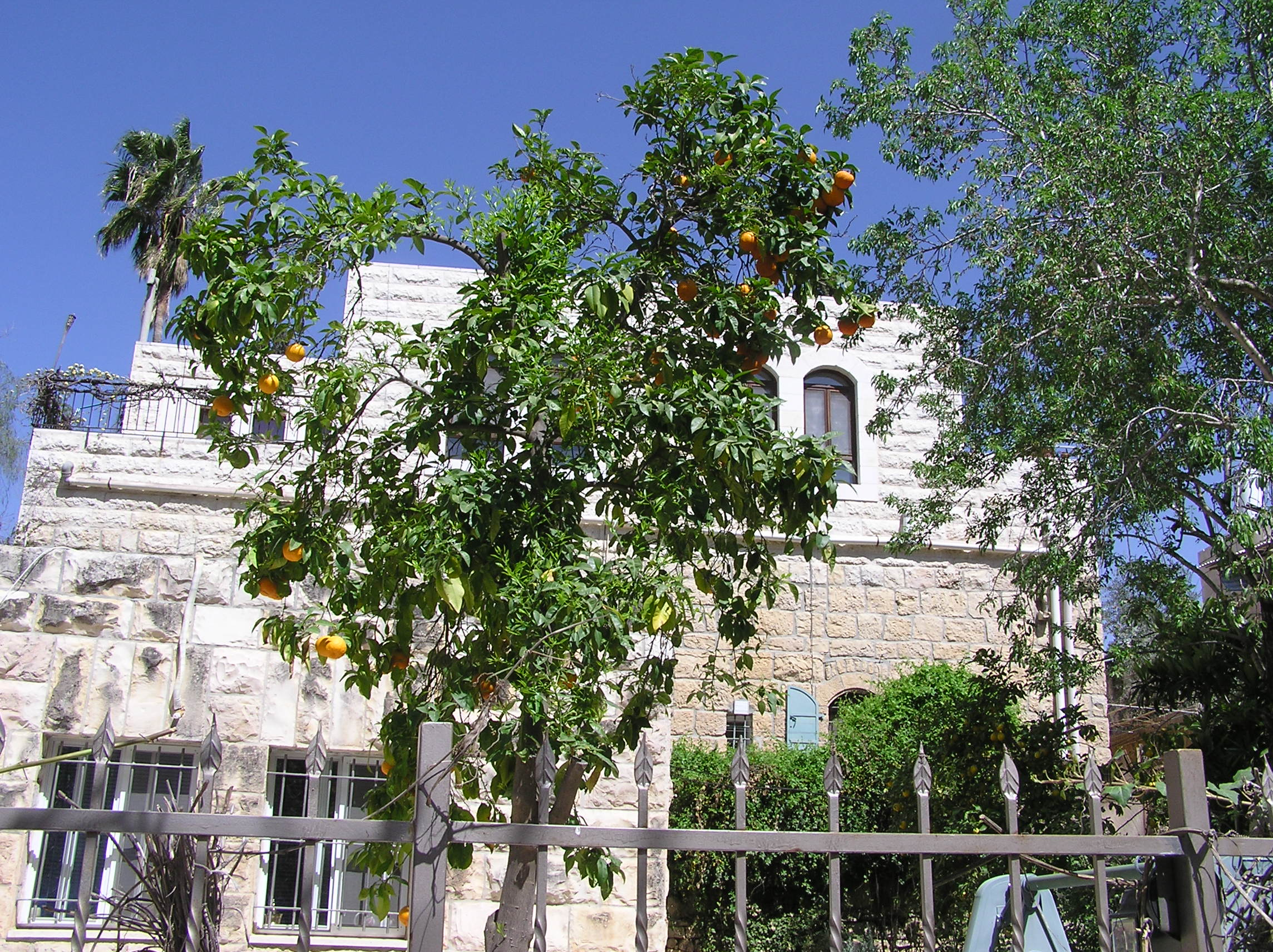 'Ayn Karim - عين كارم : More Of Ain Karem's Beautiful Homes & Courtyards.