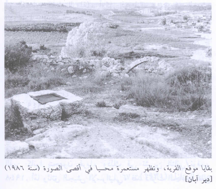 Dayr Aban - دير آبان : Remains Of Village Site In 1986