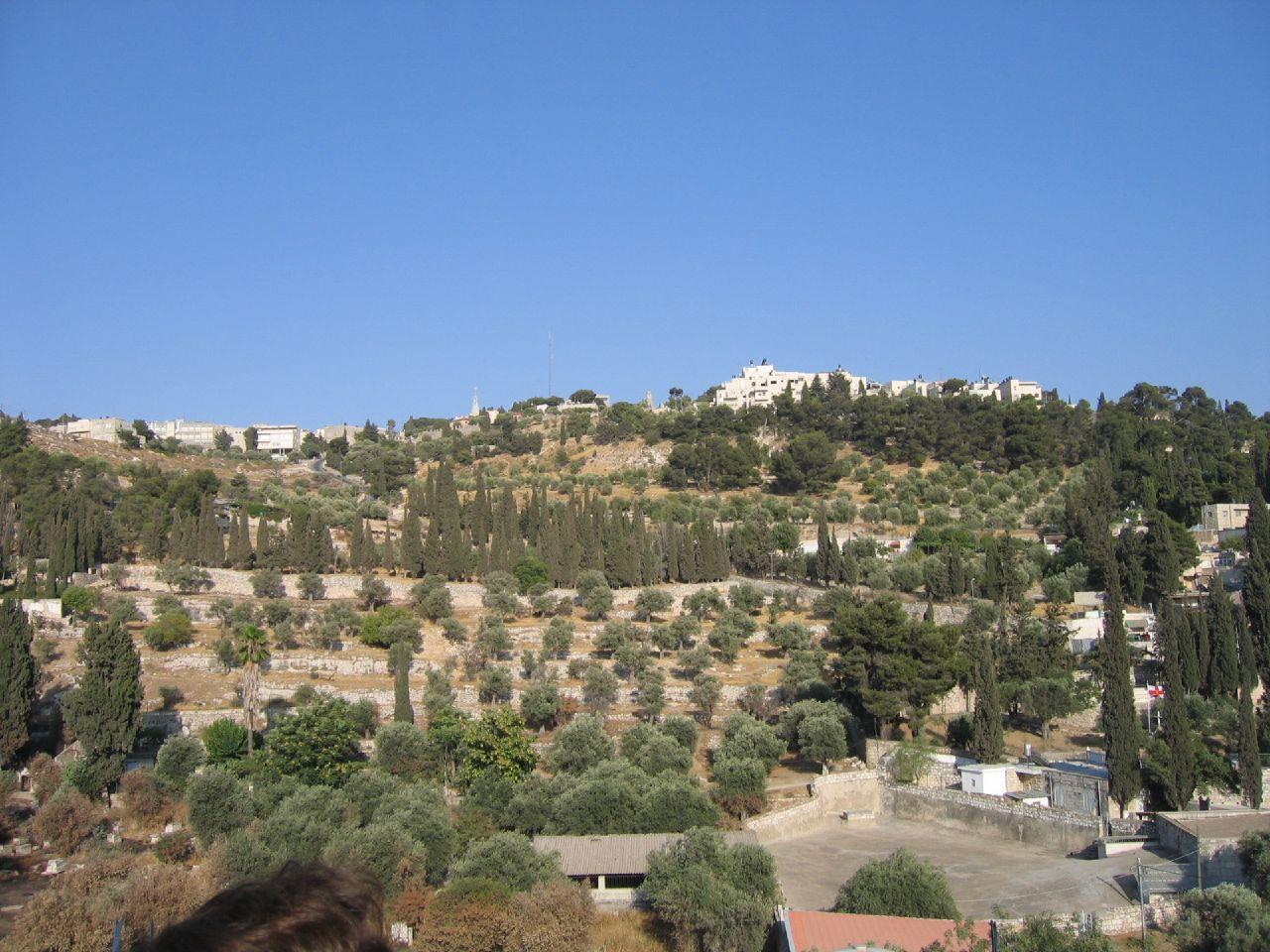 القدس.. Jerusalem-10217.jpg