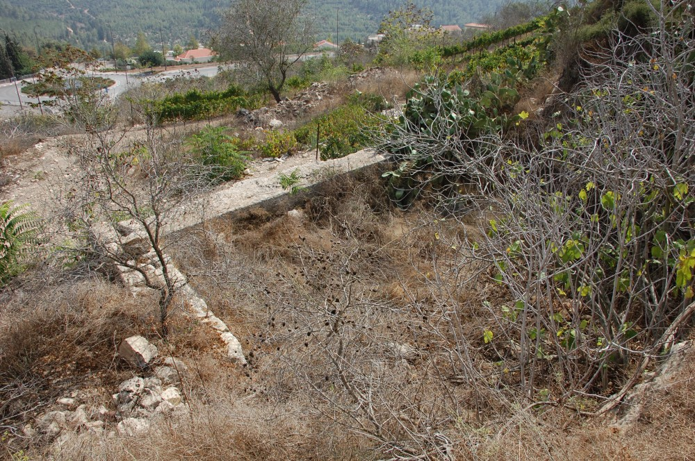 Saris - ساريس : remains of artificial pool on slope of the hill - Saris