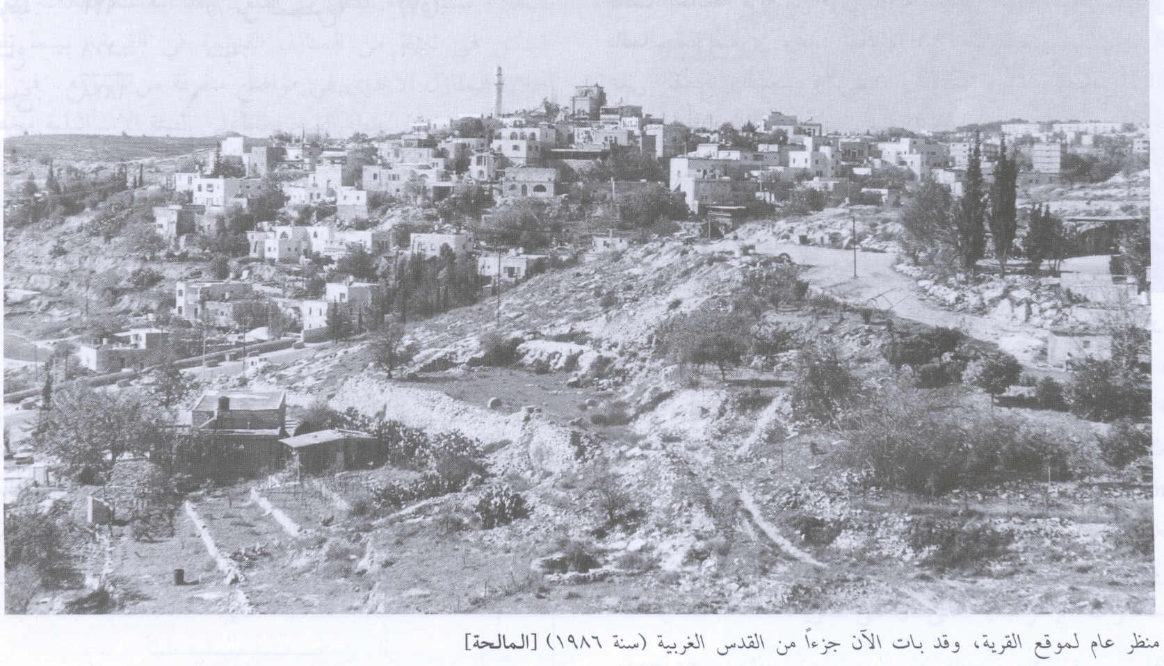al-Maliha - المالحه : General view of the village, 1986