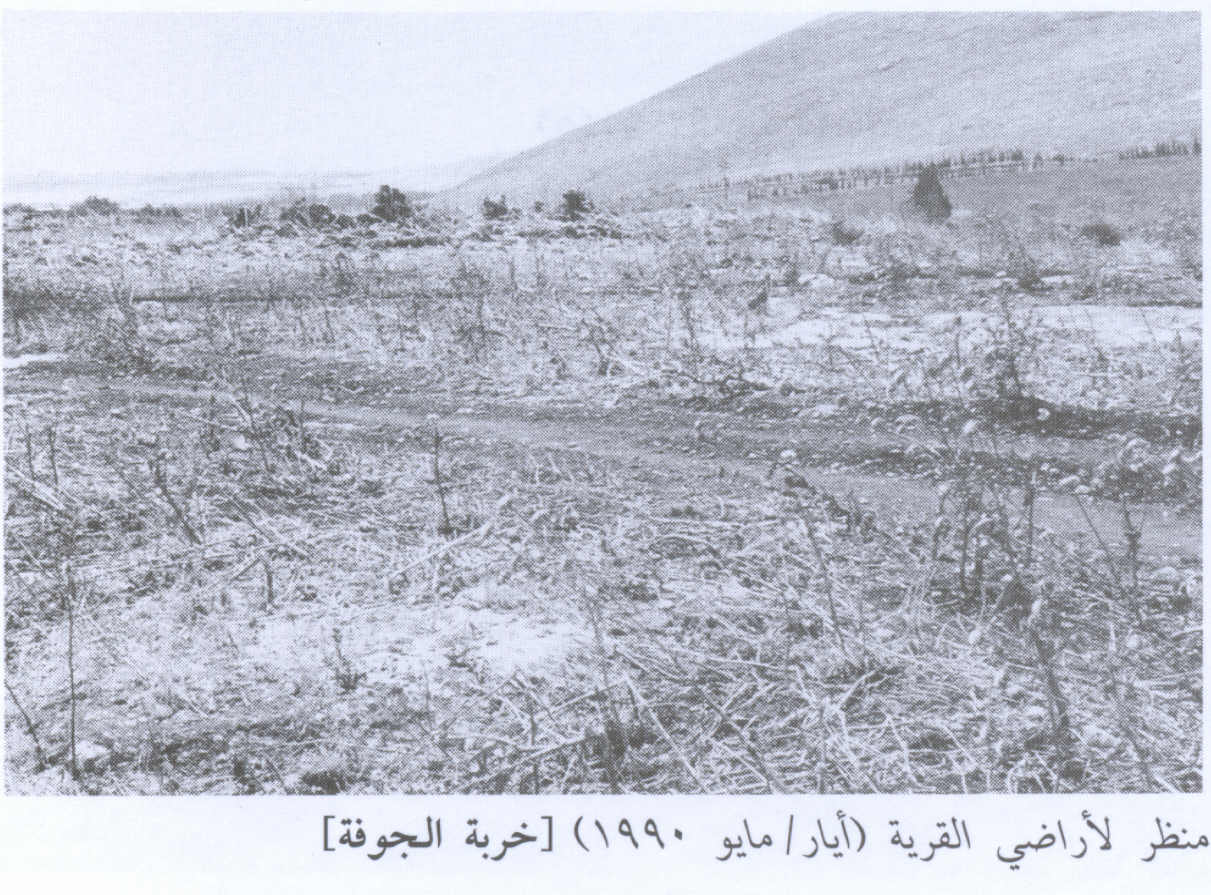 al-Jawfa, Khirbat - خربة الجوْفة : A view of the village land, 1990