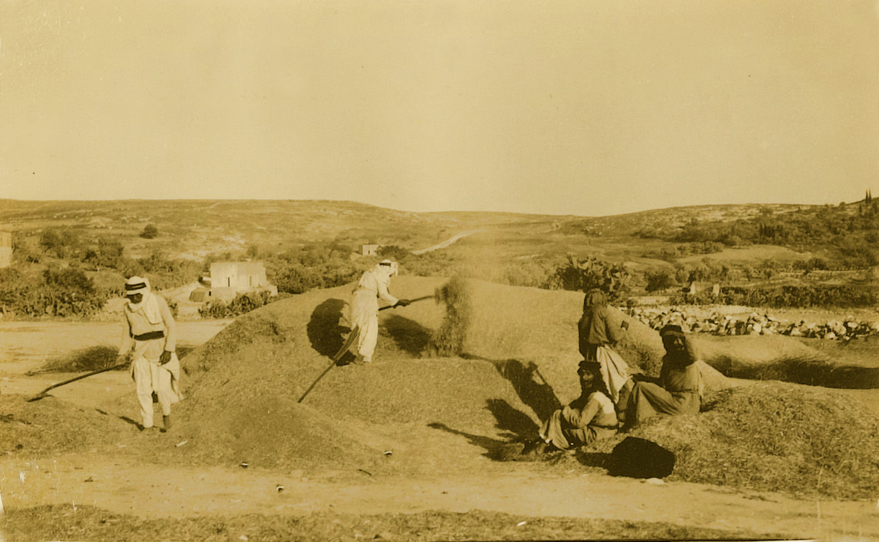Nazareth - الناصرة : NAZARETH - Late 19th, early 20th c. 59 - A threshing field at the outskirts of Nazareth, circa 1920s (Per Reem Ackall)