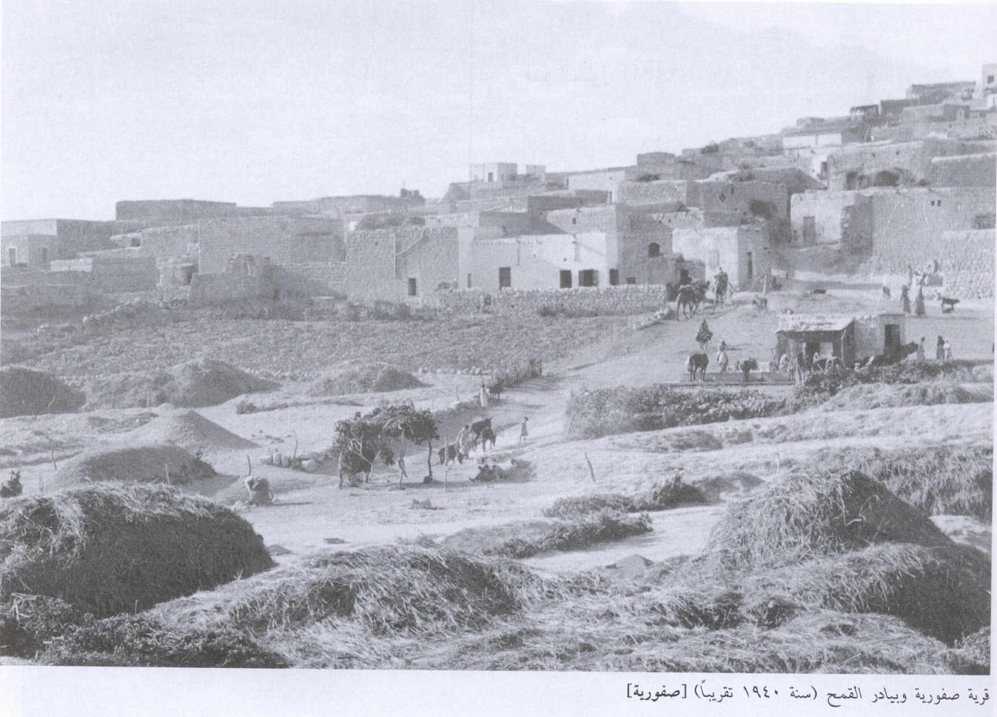 Saffuriyya - صفورية : General View Of The Village Pre 1940.