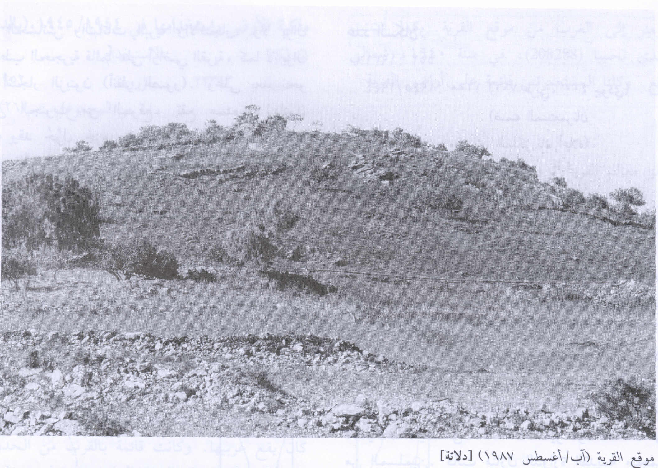 Village Site And Some Rubble, 1987