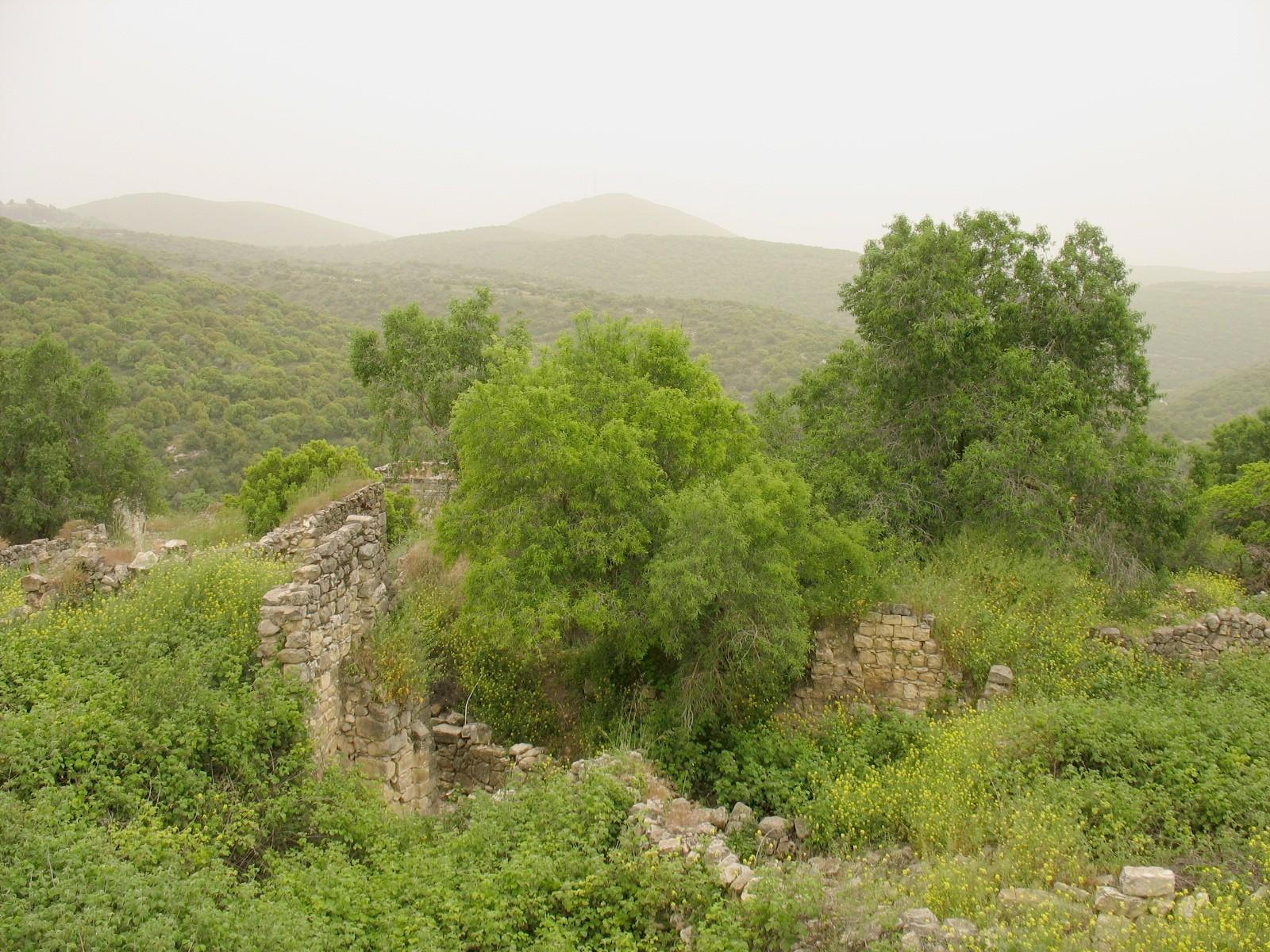Kafr Bir'im - كفر برعم : The beautiful landscape, the destroyed village appears in the foreground