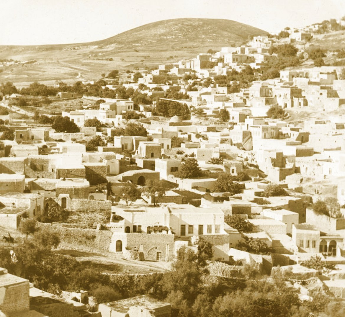 Safad - صفد : SAFAD - Late 19th, early 20th c. 7
