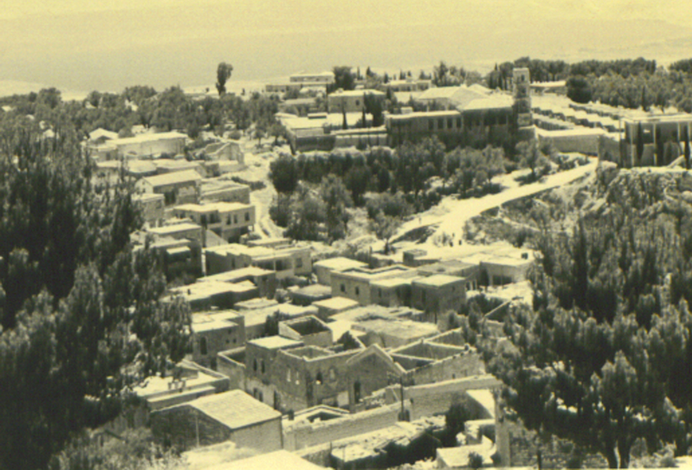 Safad - صفد : Arab neighborhood, Safad