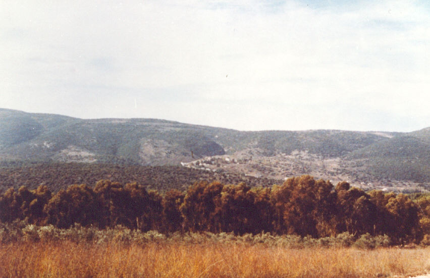Safsaf - صفصاف : General view of the neighboring lands around Safsaf. Picture provided by Mr. Nayef Naser Ahmad Zaghmout.