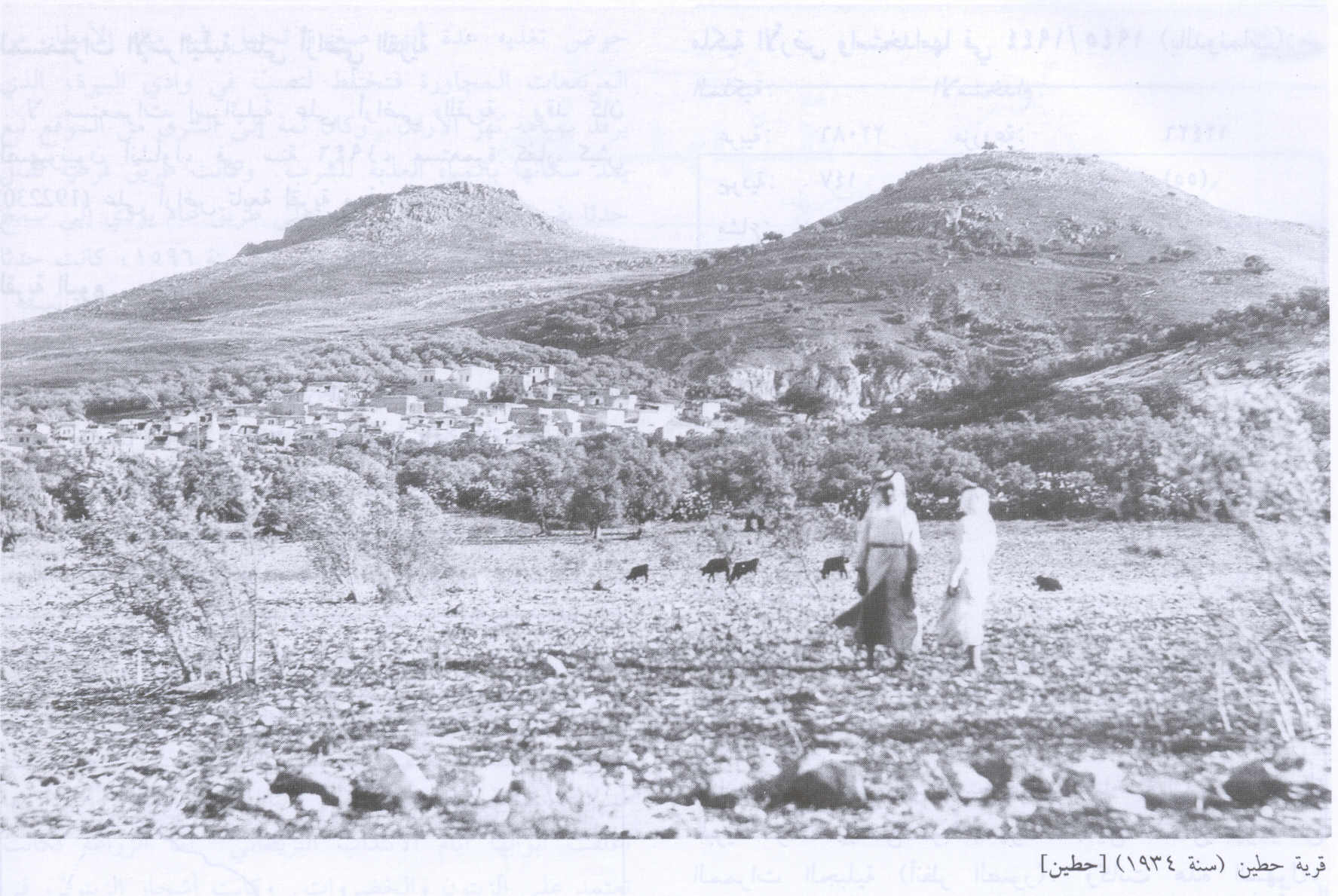 Hittin - حطّين : General View Of The Village #2, 1934