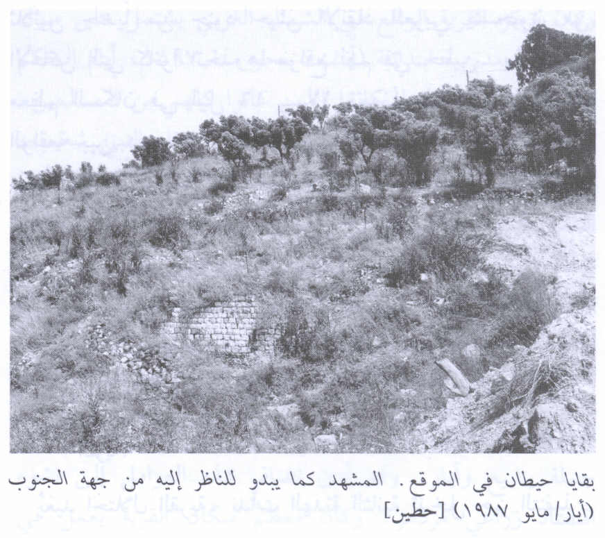 Hittin - حطّين : Remnants of the walls on the site, view from the south, 1987