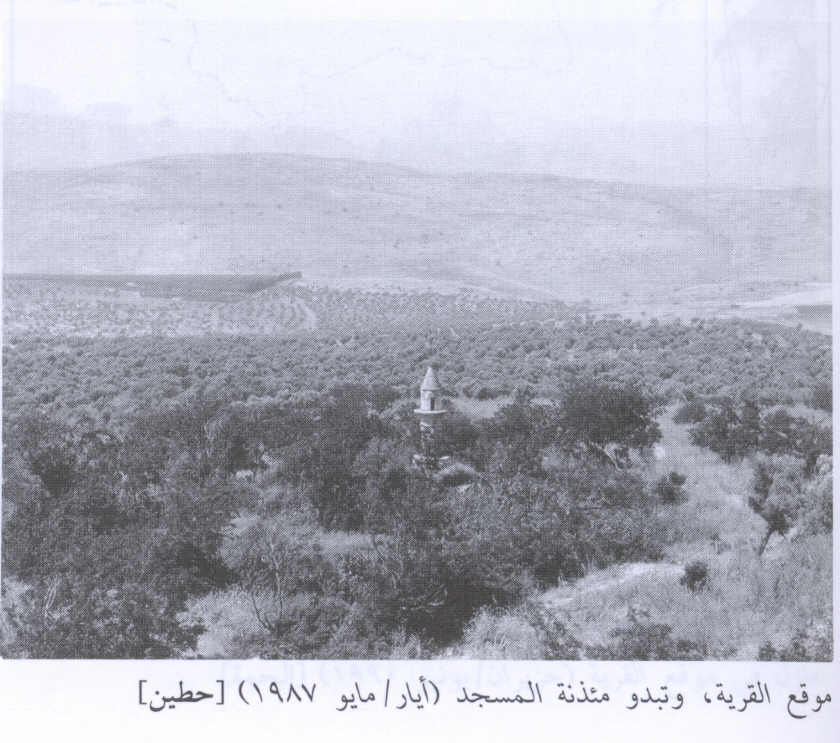 Hittin - حطّين : The village site & its mosque, 1987