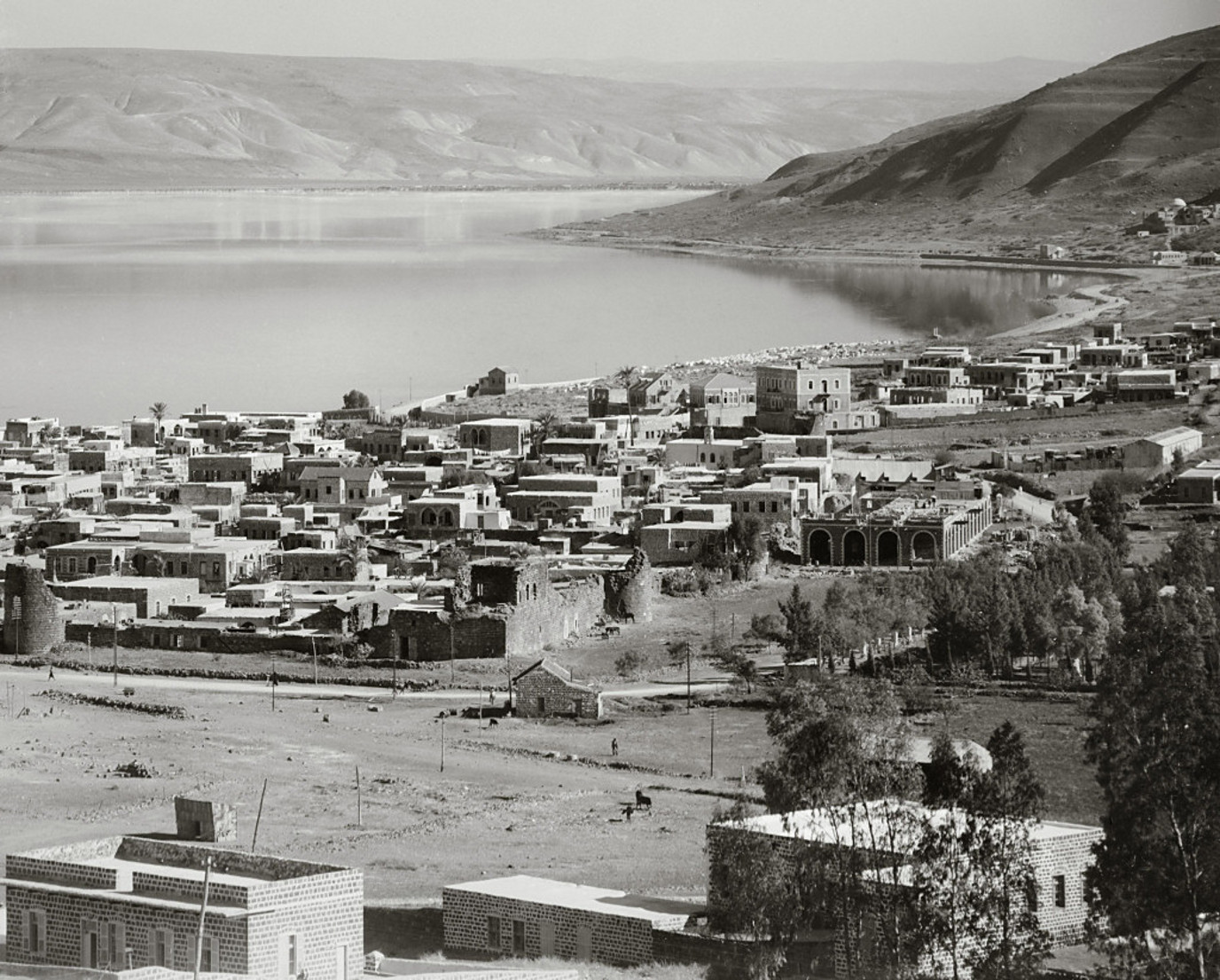 Tiberias - طبريه : TIBERIAS - Late 19th, early 20th c. 83 - Tiberias and Sea of Galilee (Matson collection)