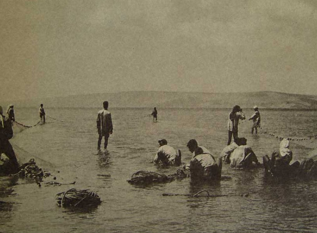Tiberias - طبريه : TIBERIAS - Late 19th, early 20th c. 85 - Arab palestinian fishermen