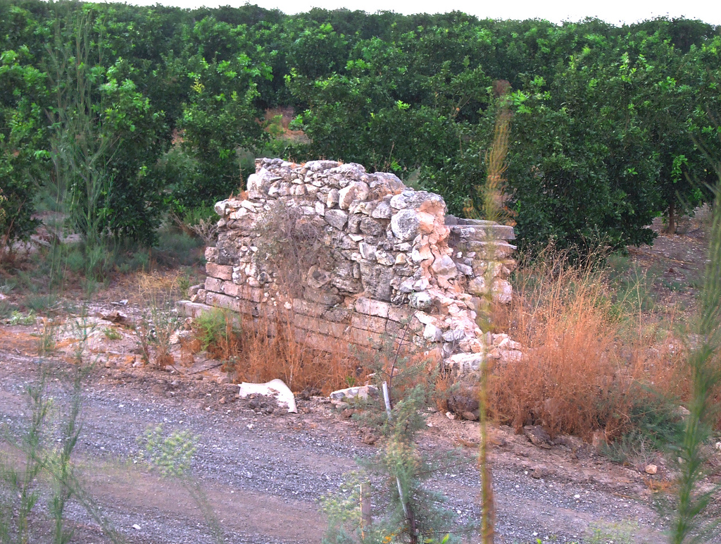 Dayr Tarif - دير طريف : West of the entrance to Moshav Beit Arif. Remains of a structure.