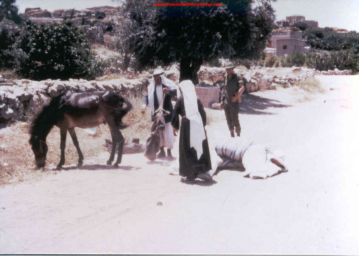 'Imwas - عِمواس : We Were Ethnically Cleansed Out Of Our Village On June 7th 1967. Picture Taken By Joseph Onan, An Israeli Soldier Living Nearby 'Imwas.  #5