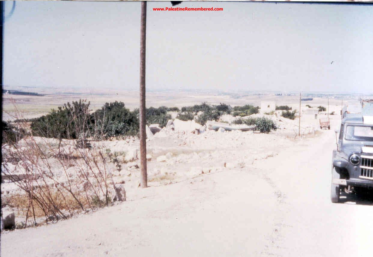 'Imwas - عِمواس : We Were Ethnically Cleansed Out Of Our Village On June 7th 1967. Picture Taken By Joseph Onan, An Israeli Soldier Living Nearby 'Imwas.   #6